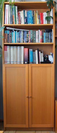 Zestaw mebli Ikea - regały, szafka RTV, półki