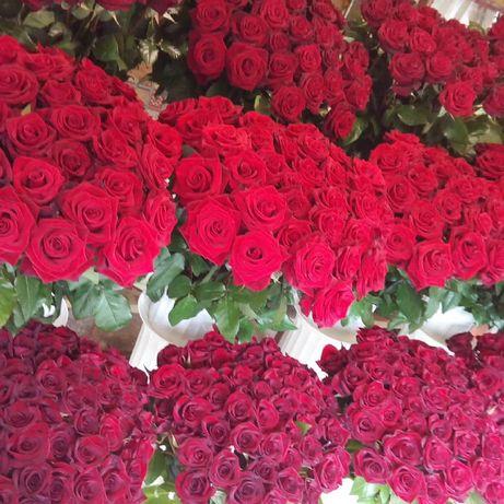 Розы В наличии Круглосуточно