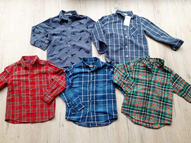Next H&M koszule 110 dla chłopca