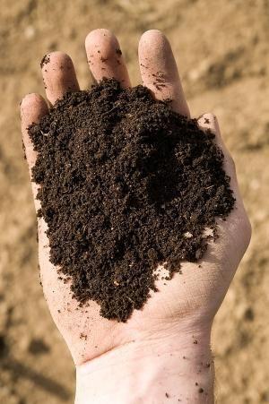 Ziemia piach żwir