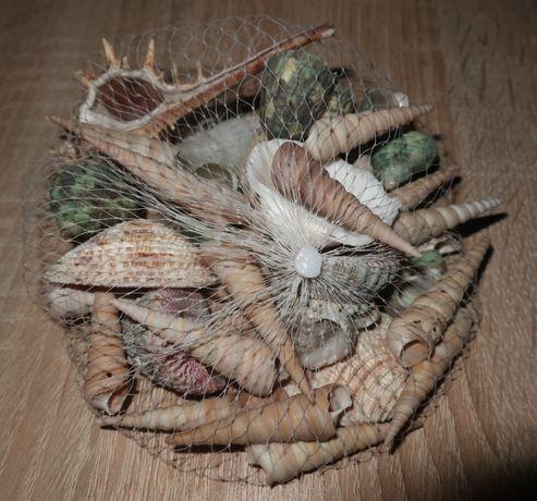 Muszelki dekoracyjne