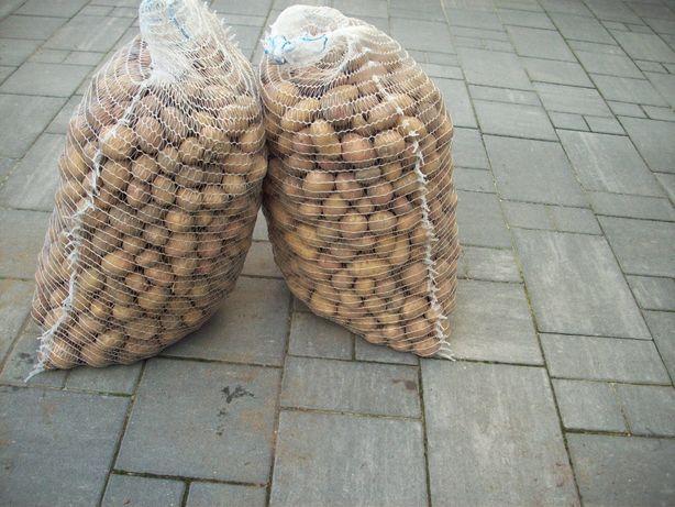 Ziemniaki drobne paszowe