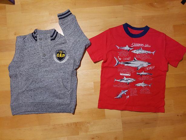 Sweter i koszulka Gap wiek 5 lat