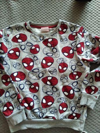 Bluza Spiderman 128/134