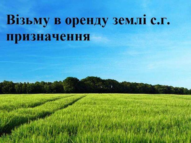 Візьмемо в оренду земельні паї