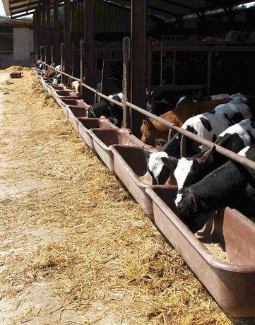 Karmidło/ Karmidło dla bydła krów cieląt z zawiesiem 120 litrów