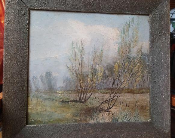 Obraz olejny - Pejzaż