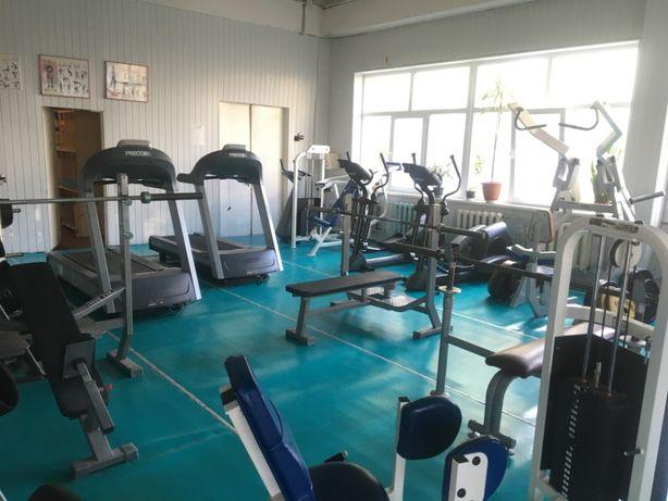 Распродажа тренажерного зала олимпийские грифы