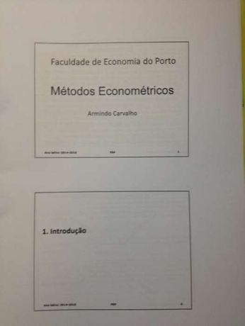 Apontamentos Métodos Econométricos FEP
