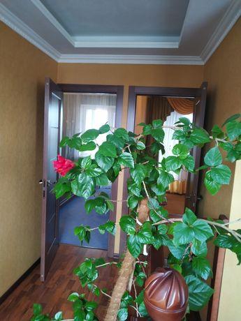Аренда комфортного Дома! 120м2+8сот, Борисполь