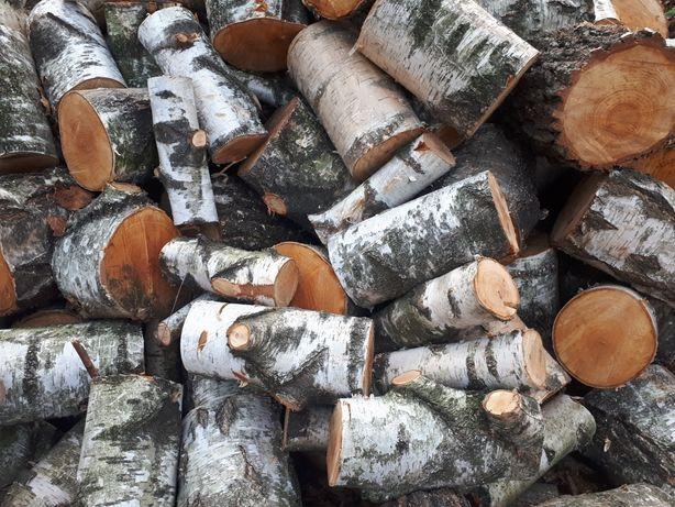 Drewno drzewo kominkowe opałowe transport gratis