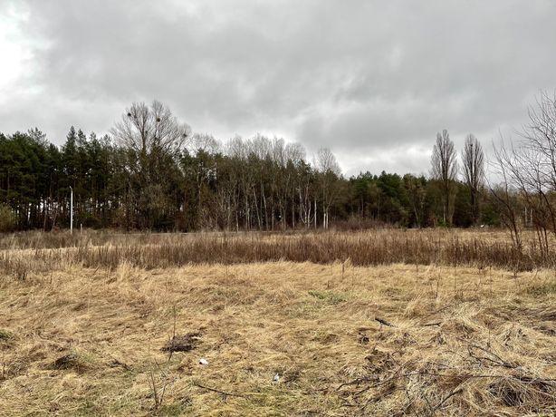 Нещеров, участок возле леса, 12 соток, от владельца
