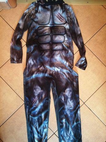 kostium /przebranie chlopiecy