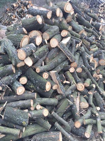 Drzewo dębowe, opał pocięte gotowe do palenia