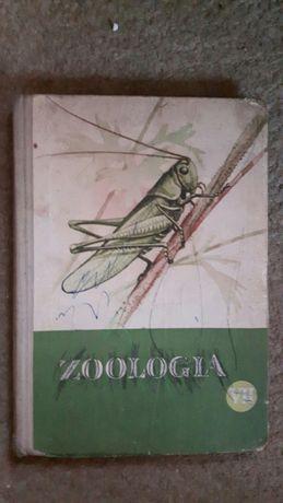 Zoologia dla klasy 7 Wójcik oraz Słownik imion Janowowa