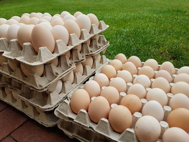 Jajka wiejskie -DOWÓZ polecam