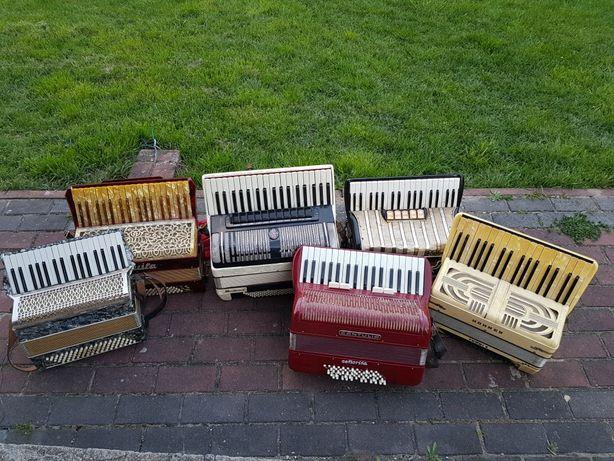 Akordeon akordeony 5 sztuk