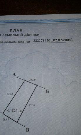 Земельный участок с. Остров Рокитнянский район Киевской области