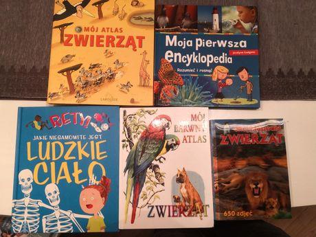 Zestaw książek albumów dla dzieci