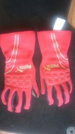 Профессиональные гоночные перчатки PUMA