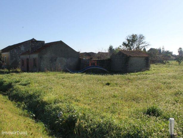 Terreno e casa antiga -