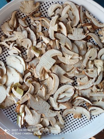 Сушені гриби і приправа з білих грибів
