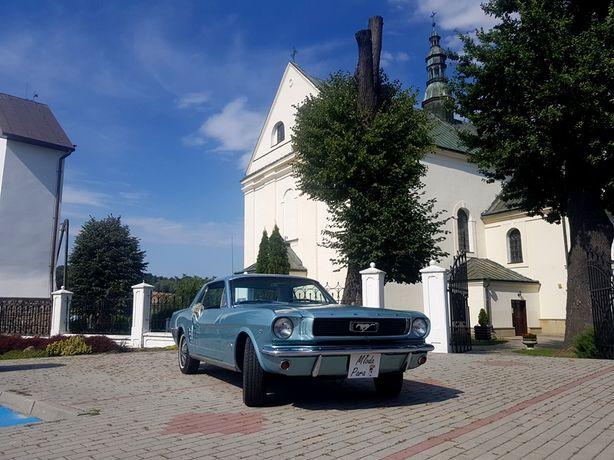 Zabytkowy Ford Mustang do ślubu Wolne terminy