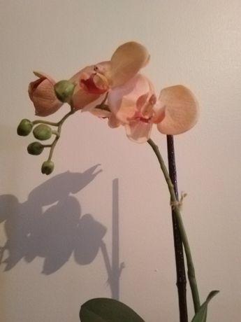 Orquídea Sia Artificial mas muito natural! NOVA!