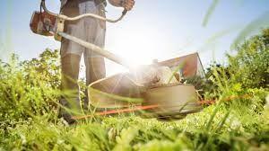 Koszenie wysokiej trawy, krzaków, pielęgnacja ogrodu, wycinka drzew