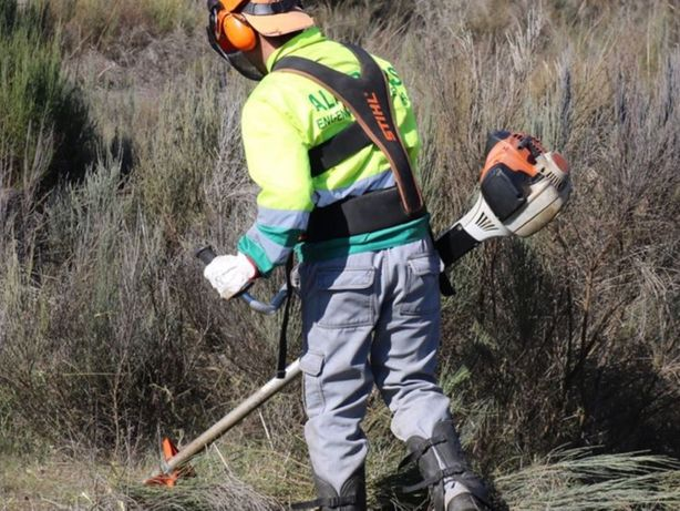 Serviço Limpeza de terrenos