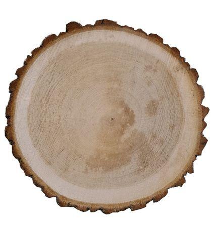 Plastry drzewa drewna monolit dąb brzoza jesion krążki drewniane