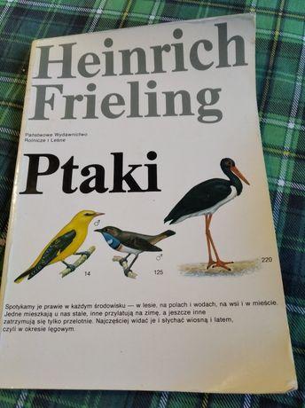Heinrich Frieling Ptaki