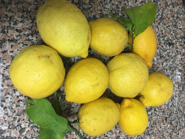 Vendo Limões Biológicos