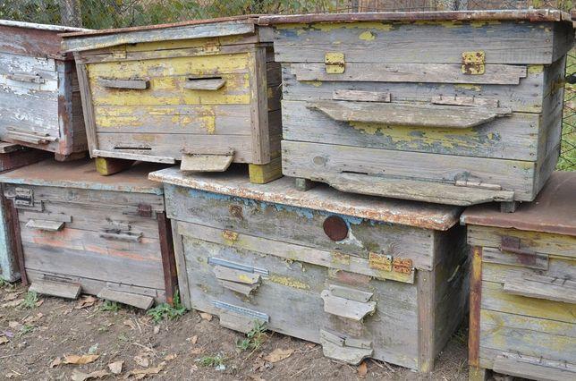 Улеи пчелиные б/у