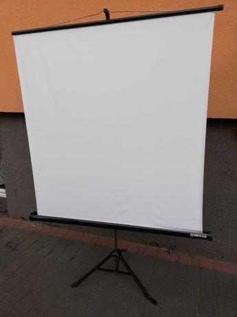 Ekran projekcyjny