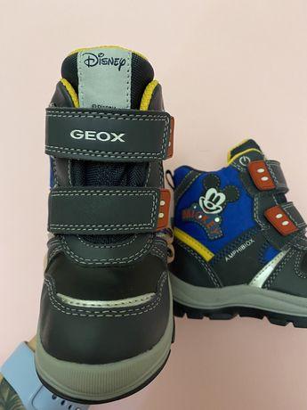 Сапожки, ботинки Geox