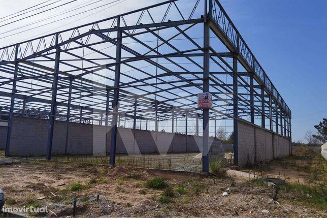 Terreno / Armazém - Pavilhão, Zona Industrial da Palhaça (Oliveira do