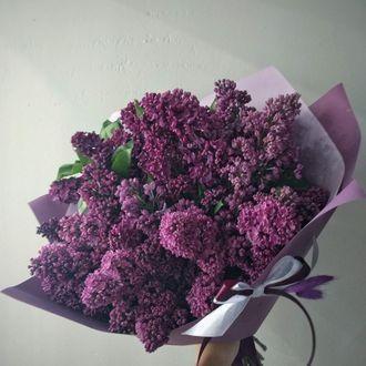 Букет из цветов бузины(доставка по городу)
