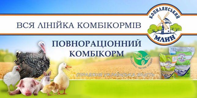 """Комбікорм преміум класу """"Копилянський млин"""", БМВД та премікси"""