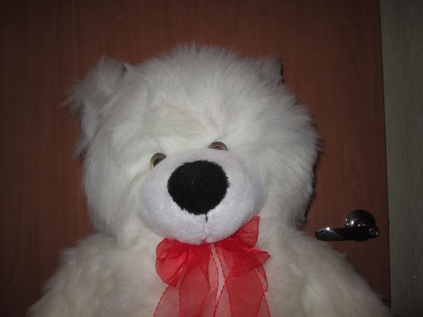 большой белый медведь в отличном состоянии.