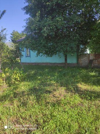 Дом газифицированный в селе Круты ( Нежинский р-н, 12 км до Нежина