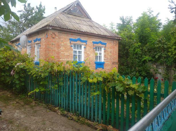 Продам будинок м. Мала Виска вул. Тобілевича 96