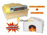 Chocadeira / Incubadora 48 ovos + Criadeira