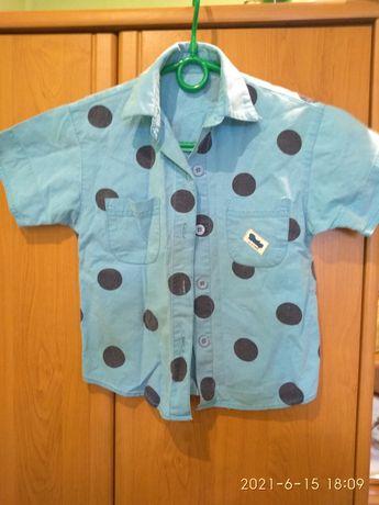 Дитяча сорочка з коротким рукавом
