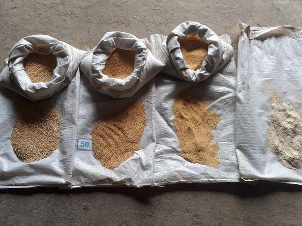 Крупа кукурудзяна/кукурузная крупа