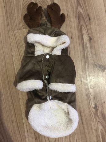 Ubranko dla psa rozmiar S