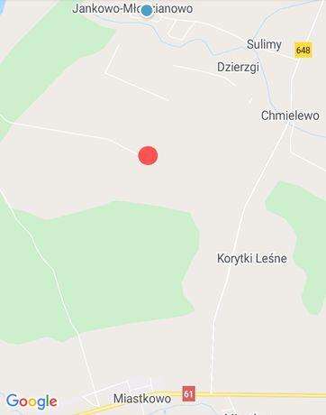 Działka rolna . Gmina Miastkowo