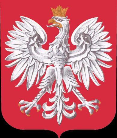 Комплексное обслуживание приезжающих в Украину поляков (польский язык)