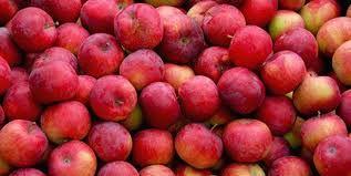 Promocja do końca miesiąca Jabłka prosto z sadu Sprzedaż jabłek