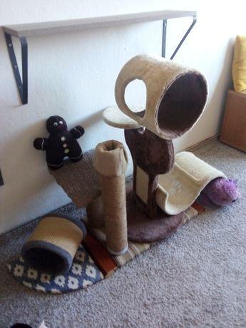 Plac zabaw dla kota